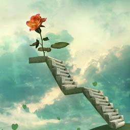 平凡到传奇,需要一步步走